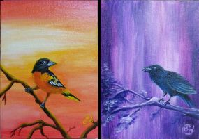Baltimore Birds - Oriole and Raven by Zaera