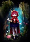 Little Red Riding Hood by Dannyckoo