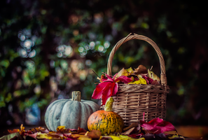 Pumpkins and Leafs by ifsantag