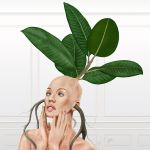 Don't be a Ficus by SabinaNore