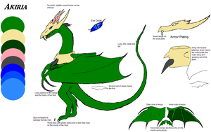 Akiria Dragon Ref Sheet by DraconaVampira
