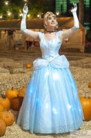 Cinderella: A Wish by FoxGlovesCosplay