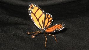 Monarch, front view by GabriellesBabrielles