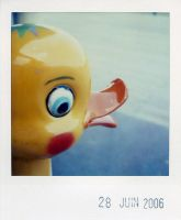 yellow duck by prismopola