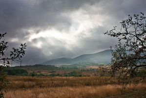 Wolf's Valley Before The Storm by mariustipa