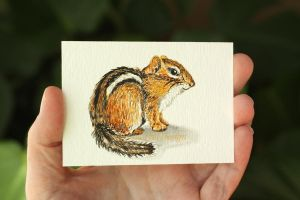 ACEO Chipmunk by Dusty-Feather