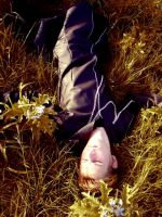 + Lay in the Feild + by Windnstorm