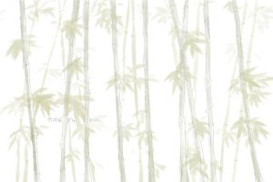 Bamboo by daydreamerre