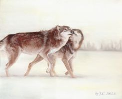 Wolves by J-C