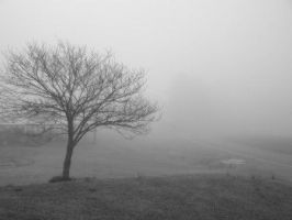 Morning Mist by Subdivided17