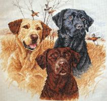 Great Hunting Dogs by EnigmaticWriterGirl