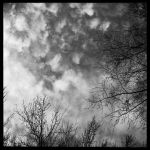 2013-027 Above by pearwood