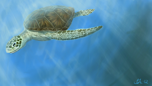 Sea turtle! by Gossepojk