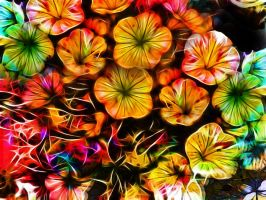 Flowers in motion by DigitalHyperGFX