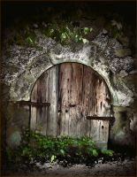 Old World Portal by PsychoBudgie