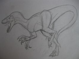 A quick Raptor Sketch by drgknot