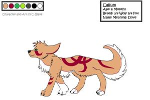 Character Sheet- Callum by TribalTattooWolf