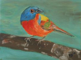 Painted Bunting by CarolynYM
