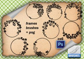 Frames Brushes by roula33