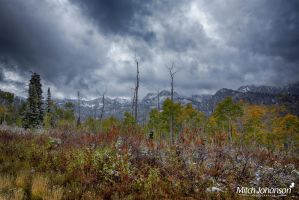 Snow and Colors HDR  by mjohanson