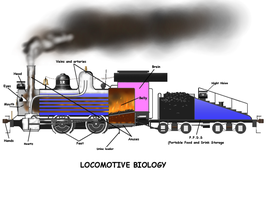 Steam Locomotive Biology by Jonatan