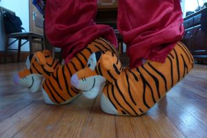 Tigger slippers #2, side by ExileLink