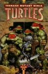 turtles cover 2 by GlennFabry