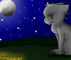Graystripe - In the Moonlight by SunriseTehVulpix