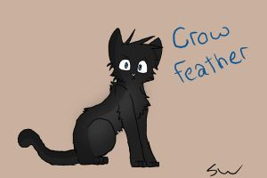 Crowfeather by Starwhisker