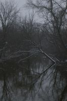 Winter Landscape Stock 3 by Astralsteed