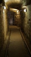 Holiday 2015 - Tunnel by cfowler7