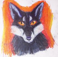 fox by frigidbloodalchemist