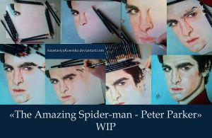 The Amazing Spider-man - Peter Parker (WIP) by AnastasiyaKosenko