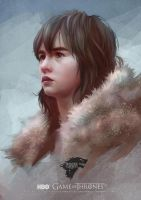 GAME OF THRONES : Bran Stark by Scottshi
