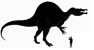 Spinosaurus size comparision by koopalings98
