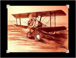 Sopwith Camel by 1001Dragons