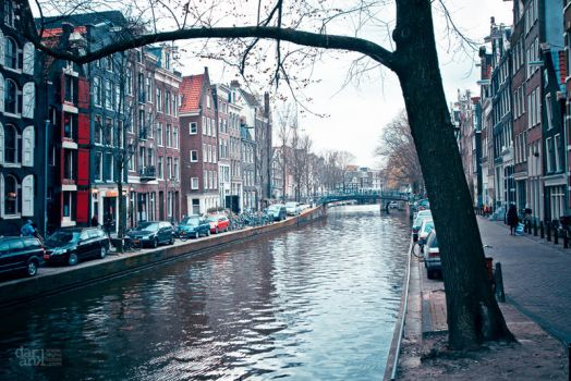 Amsterdam 02 by duhcoolies