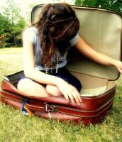 Suitcase Travel by alleyx33