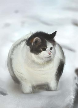 Fat Cat by conniebees