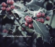 don't want a lot for christmas by FrancesHolly
