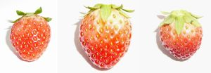 Strawberry Fruit Reference by Enchantedgal-Stock
