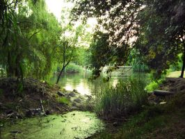 The Swamp by 2-Dfree