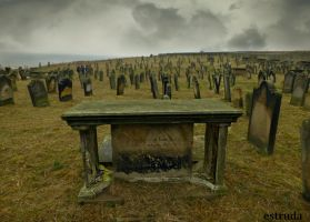 Whitby Cemetery by Estruda