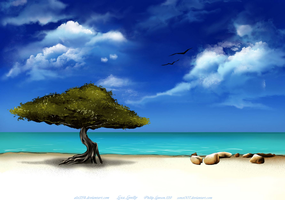 Aruba For Barb By alx234 by zenx007