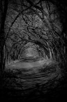 The Road to Hell by thecrippler