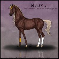 Najya by the-renegade