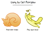 Cat Principles Page 2 by Allishinca