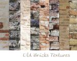Old Brick Textures by morana-stock