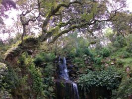 Sintra - Portugal by AHenriques