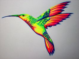 Hummingbird by nicostars